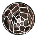 Hair net light Pastorelli with Crystals color Pink Article 00644